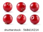 Cranberry. Berry Isolated On...