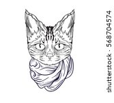 vector face of cat with scarf.... | Shutterstock .eps vector #568704574