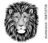 wild cat wild lion hand drawn... | Shutterstock . vector #568715728