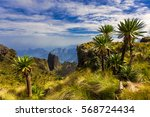 ethiopia. simien mountains... | Shutterstock . vector #568724434