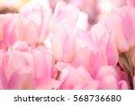 Stock photo beautiful artificial tulips flowers 568736680