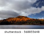 splashes of colorful forest....   Shutterstock . vector #568855648