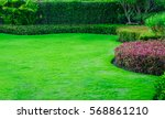 green lawn  the front lawn for... | Shutterstock . vector #568861210