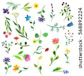 watercolor doodle plants and... | Shutterstock . vector #568892224
