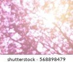 blurred tree bokeh pink soft... | Shutterstock . vector #568898479