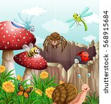 different types of insects in... | Shutterstock .eps vector #568915684
