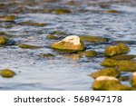 Stones In The River As A...