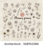 set of doodle sketch flowers on ... | Shutterstock .eps vector #568961086