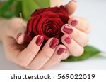 hands of a woman with dark red... | Shutterstock . vector #569022019