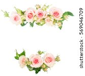 Stock photo pink blooming fresh roses frame borders isolated on white background 569046709