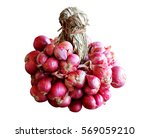 red onion white background   Shutterstock . vector #569059210