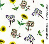 seamless pattern with... | Shutterstock . vector #569099350