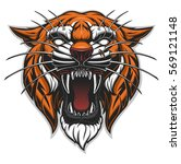 angry tiger face. color vector... | Shutterstock .eps vector #569121148