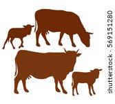 vector illustration. cow and... | Shutterstock .eps vector #569151280