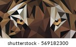 eyes of tiger low poly | Shutterstock .eps vector #569182300