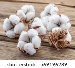 fluffy cotton ball of cotton... | Shutterstock . vector #569196289