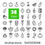 vegetables outline icons set.... | Shutterstock .eps vector #569203048
