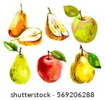 set with a pear in a cut ... | Shutterstock . vector #569206288