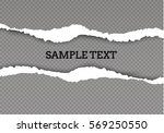 seamless ripped paper and... | Shutterstock .eps vector #569250550