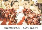 group of cheerleaders at... | Shutterstock . vector #569316124