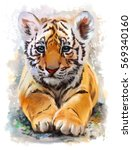 Little Tiger Watercolor Painting