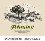 farm sketch. rural landscape ... | Shutterstock .eps vector #569392219