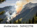 Forest Fire At Hurricane Ridge...