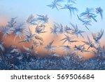 ice patterns on winter glass | Shutterstock . vector #569506684