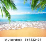 palm and tropical beach | Shutterstock . vector #569532439