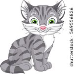 grey cat | Shutterstock .eps vector #569556826