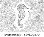 hand drawn sketch of seahorse... | Shutterstock .eps vector #569602570