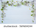 background with flowering... | Shutterstock . vector #569604244