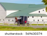 Small photo of Amish Buggy