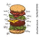 hamburger ingredients with meat ... | Shutterstock .eps vector #569639590