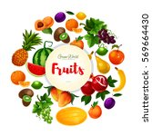 fruits poster with vector white ... | Shutterstock .eps vector #569664430
