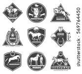 monochrome horse racing labels... | Shutterstock .eps vector #569764450