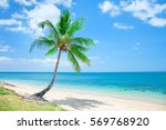 tropical beach with coconut palm | Shutterstock . vector #569768920