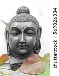 lord buddha face in black with... | Shutterstock . vector #569826334