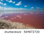 salt pink lagoon in las... | Shutterstock . vector #569872720