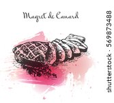 magret de canard watercolor... | Shutterstock .eps vector #569873488