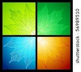 maple leaf vein patterns for...