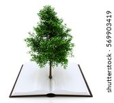 Tree Growing From An Open Book  ...