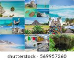 traveling around mexico in... | Shutterstock . vector #569957260