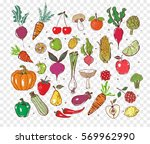 colored doodle fruits and... | Shutterstock .eps vector #569962990