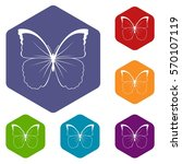 butterfly icons set rhombus in...   Shutterstock .eps vector #570107119