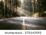street through the woods | Shutterstock . vector #570143593