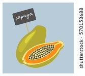 vector fruit   papaya   Shutterstock .eps vector #570153688