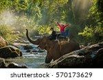 Young Women Riding An Elephant...