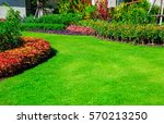 green lawn  the front lawn for... | Shutterstock . vector #570213250