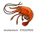 cartoon shrimp | Shutterstock .eps vector #570229903